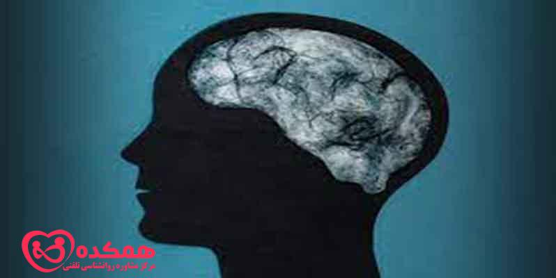 What is brain fog disorder in people?